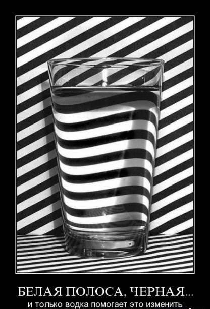 Водка помогает изменить белую и чёрную полосу демотиватор - Демотив-Картинки-Фото