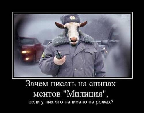 Милиция закрыла дела, открытые после бунта во Врадиевке: Всю семью угробили, а преступления нет - готовы идти на крайние меры - Цензор.НЕТ 6818